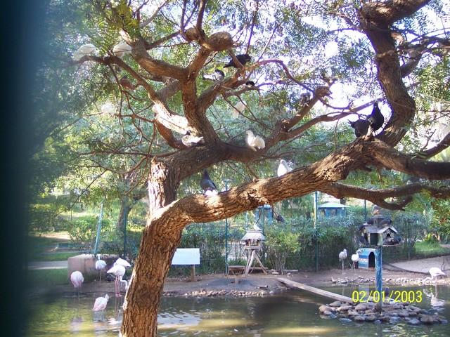 أهم المعالم السياحية بدولة سلطنة 100_0556_001.sized.jpg